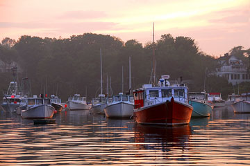fishing boats in a cove along the Maine coastline