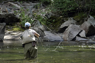 fly fishing in a Montana mountain stream